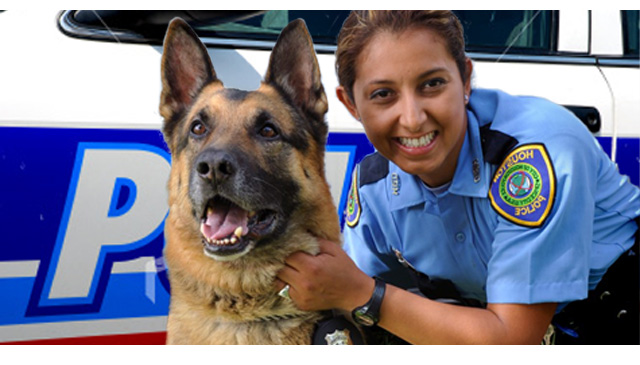 k9 police officer career  job  and training information